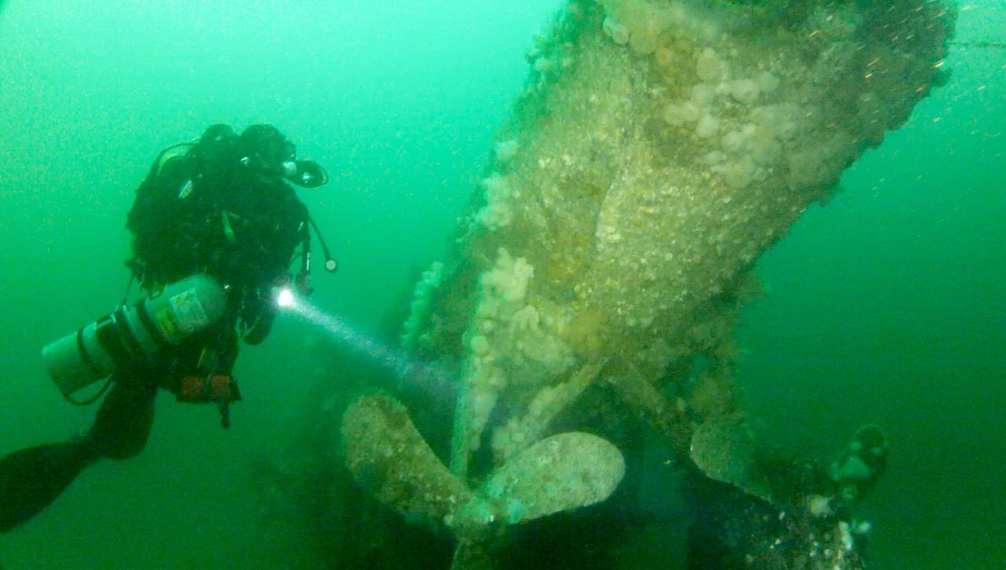 Dive-10