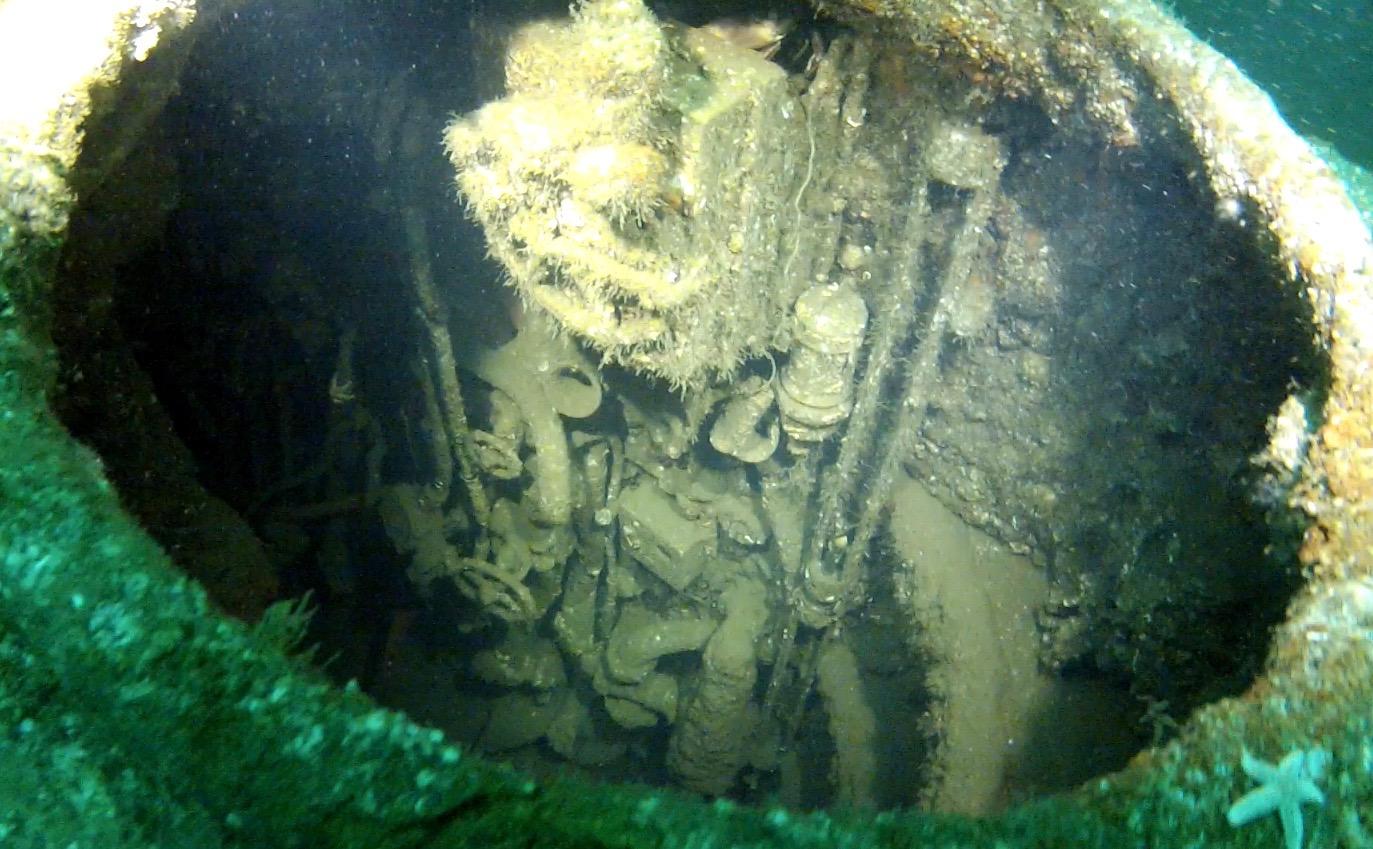 Dive-5