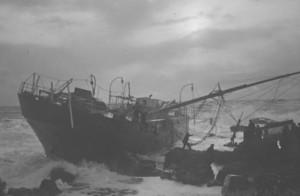 G Koch ashore 2
